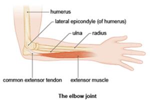 Elbow (2)