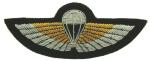 SBS Wings