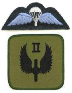 No.2 Sqn, RAF Regt (1)