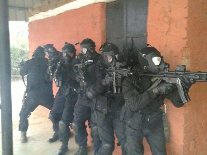 Purpose Security Guards